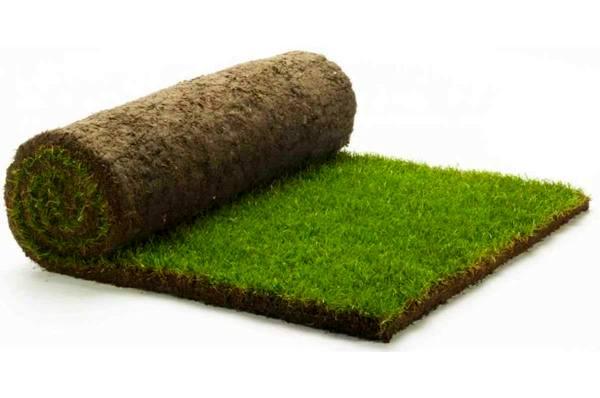 Достоинства рулонных газонов